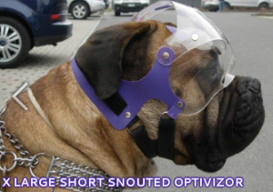 The_Optivizor_-_Provizor_International_Canine_and_Equine