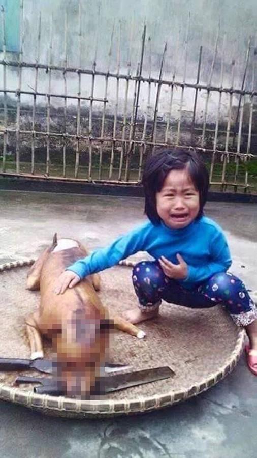 Little Girl Spots Her Missing Dog Roasted