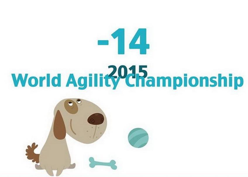 agility22