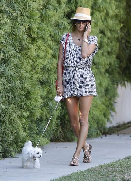 Μοντέλο Alessandra Ambrosio με σκύλο της στο Brentwood, Καλιφόρνια στις 16 Ιουνίου, 2014