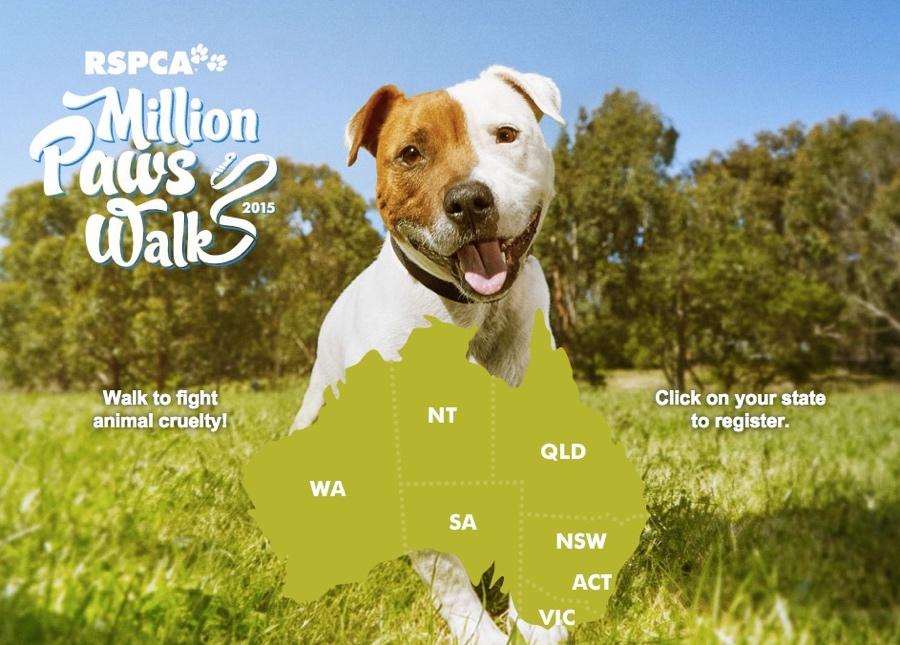 σκύλοι παγκόσμιο ρεκόρ μπαντάνες