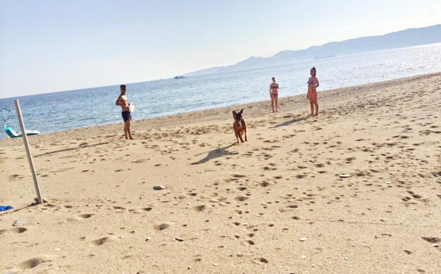 διακοπές 3