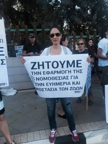 Διαμαρτυρία Κύπρος (5)