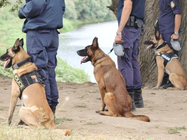 Ομάδα Αστυνομικών Σκύλων (2)