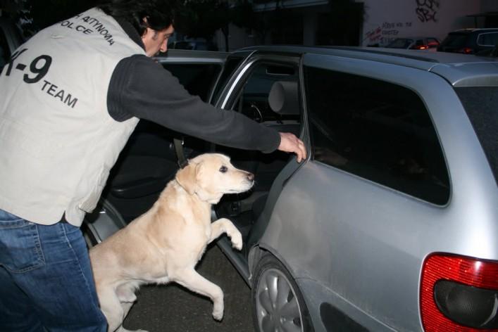 Ομάδα Αστυνομικών Σκύλων (7)
