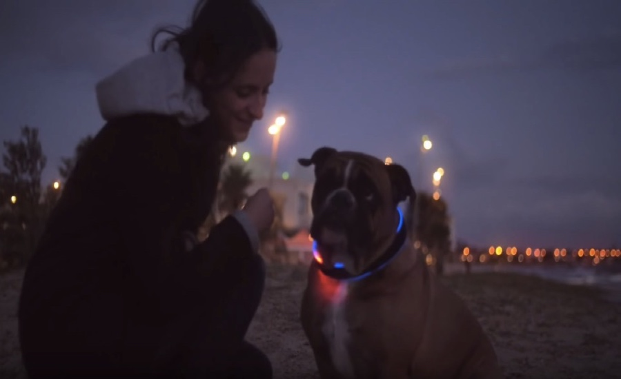 Έξυπνο κολάρο σκύλου ανιχνεύει τη τοποθεσία και τη θερμοκρασία. Δείτε πως
