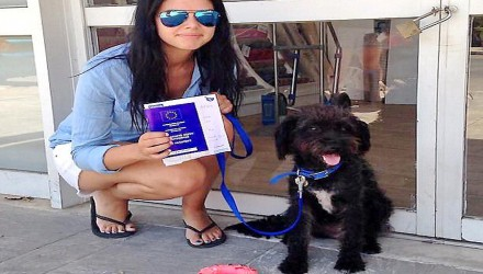 Αδέσποτο στην Κρήτη έσωσε 25χρονη Βρετανή και εκείνη το υιοθέτησε
