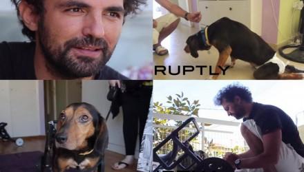 Απογειώνεται ο Έλληνας υδραυλικός που κάνει ανάπηρα σκυλάκια να περπατήσουν ξανά !