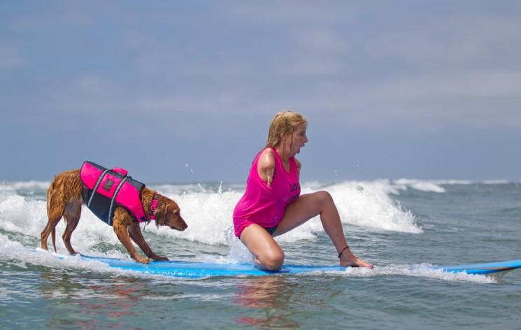 Σκύλος διδάσκει παιδιά με ειδικές ανάγκες να κάνουν σέρφινγκ (4)