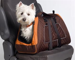 Σκύλος στο αυτοκίνητο - Οδήγηση, κίνδυνοι και ασφάλεια ! 3