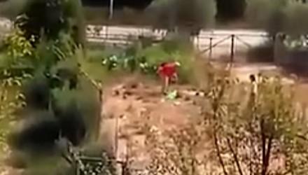Δημοτικός σύμβουλος κακοποιεί βάναυσα σκύλο στη Καβάλα [Video]