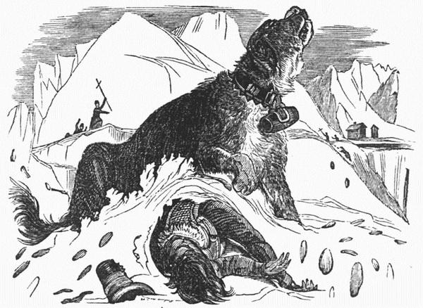 Κουβαλάει βαρελάκι με κονιάκ ένας σκύλος Αγίου Βερνάρδου (3)