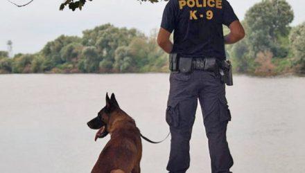 «Περικοπές» στη συντήρηση των Κ9 σκυλιών του Λιμενικού Σώματος