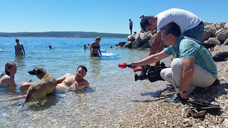 Pet-friendly-beach-bar-προσφέρει-παγωτά-και-μπύρες-σε-σκύλους-σε-pet-friendly-παραλία-15-768x432