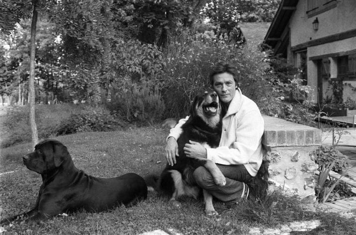 Alain Delon with his dogs ** NB 157116 **