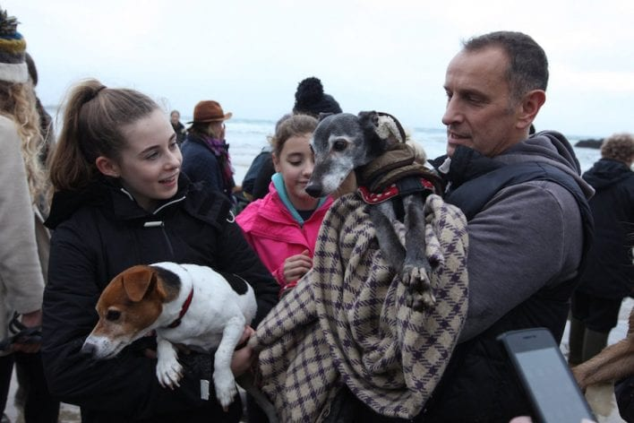 Mark Woods takes his dog Walnut for a final walk on Porth beach, November 12 2016. See SWNS story SWWALNUT; Hundreds of animal lovers turned out yesterday to support a heartbroken dog owner as he took his beloved pet on its final walk. Mark Woods stole the nation's heart after he appealed for fellow dog lovers to join him on his last walk with Walnut, the 18-year-old whippet he has has had since a puppy. Hordes of well-wishers, many accompanied by their own dogs, joined Mark and his family on a wind swept Porth beach, Newquay in Cornwall for Walnut's emotional farewell. Mark carried Walnut across the beach as his health has deteriorated in old age and he's no longer able to walk.